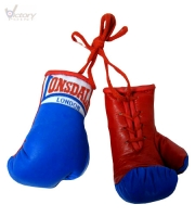 Lonsdale London Mini Gloves