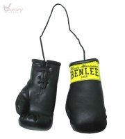 BenLee Mini Boxing Glove